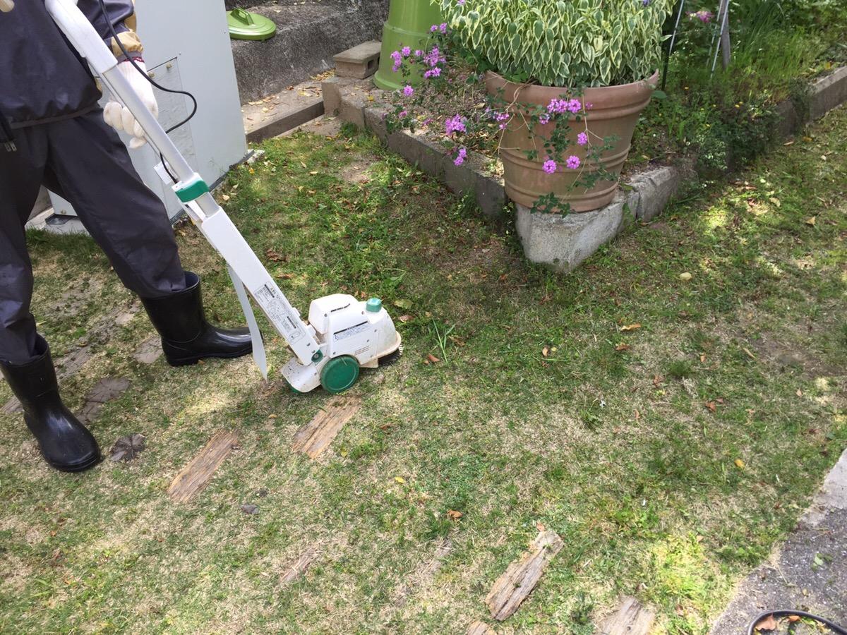 小型電動芝刈り機で 庭の芝生と草の管理