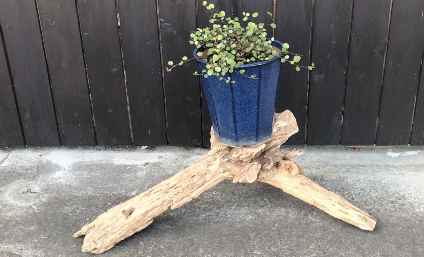 DIY 枯れ木でフラワースタンドを作ってみた